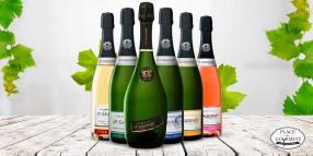 Coffret champagnes découverte